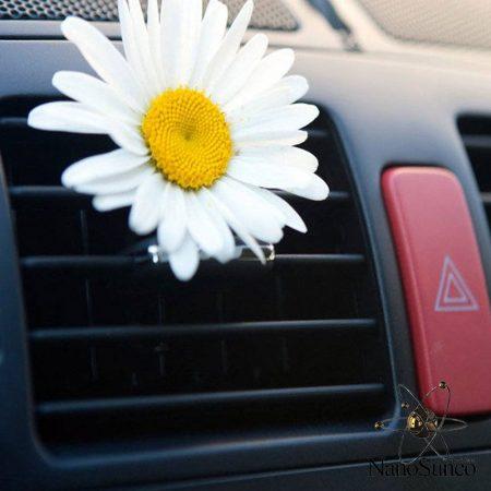 ضد عفونی کننده و خوشبو کننده هوای خودرو